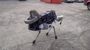 Cachorro robô 02