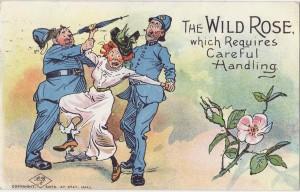 the-wild-rose